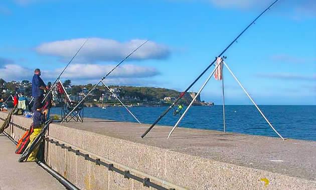 防波堤釣り偏光サングラス
